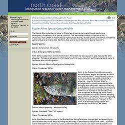 North Coast IRWMP: Content: Russian River Special-Status Wildlife