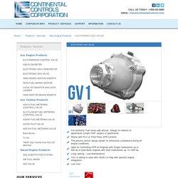 Natural Gas Variable Pressure Control