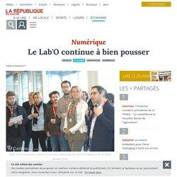 Le Lab'O continue à bien pousser - Orléans (45000) - La République du Centre