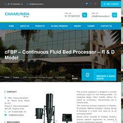 Continuous Fluid Bed Processor
