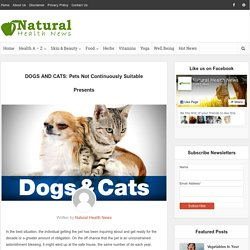 DOGS AND CATS: Pets Not Continuously Suitable Presents