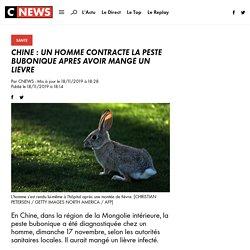 CNEWS 18/11/19 CHINE : UN HOMME CONTRACTE LA PESTE BUBONIQUE APRÈS AVOIR MANGÉ UN LIÈVRE