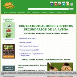 Contraindicaciones y efectos secundarios de la avena