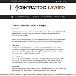 Contratto Commercio - I livelli in dettaglio
