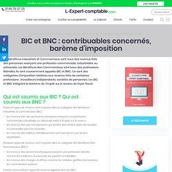 BIC et BNC : contribuables concernés, barème d'imposition (expert comptable)