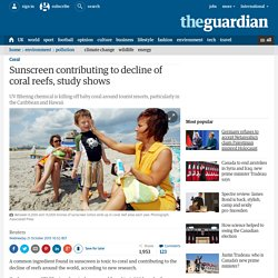 Sunscreen contributing to decline of coral reefs, study shows