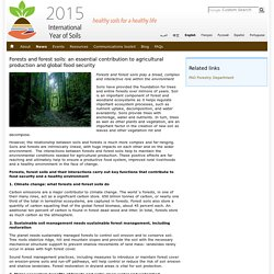 Forests and forest soils: an essential contribution to agricultural production and global food security