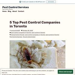 5 Top Pest Control Companies in Toronto