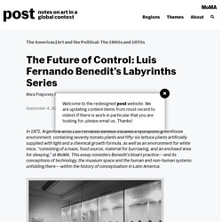 The Future of Control: Luis Fernando Benedit's Labyrinths Series