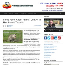 Some Facts About Animal Control In Hamilton & Toronto