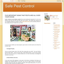 Safe Pest Control: FIVE IMPORTANT SIGNS THAT PESTS ARE ALL OVER YOUR HOUSE