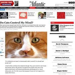 Do Cats Control My Mind? - James Hamblin