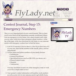 FlyLady Journal, Step 15: Emergency Numbers