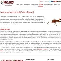 Ant Control Phoenix AZ