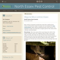 Ways to Mice control, Essex - North Essex Pest Control : powered by Doodlekit