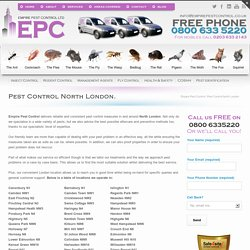 Pest Control and Removal North London - Get a Free Quote