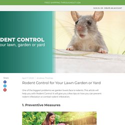 Natural Mice Repellent for Outside - MDX — MDX Concepts