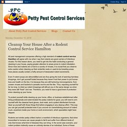 Petty Pest Control Services: Cleanup Your House After a Rodent Control Service Hamilton