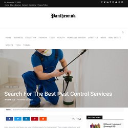 Search For The Best Pest Control Services