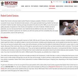 Rodent Control Services Phoenix AZ
