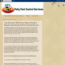 Petty Pest Control Services: Top Reasons Why Your Home Needs a Regular Residential Pest Control Service