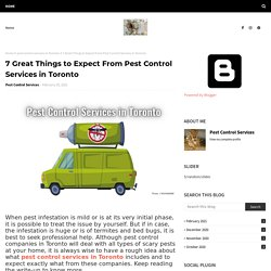 7 Great Things to Expect From Pest Control Services in Toronto