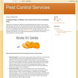 Pest Control Services: 3 Natural Ways To Make Your Home Free From Unwanted Pest