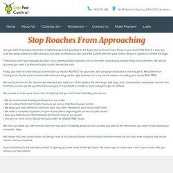 Pest Control Sydney - Safepestcontrol