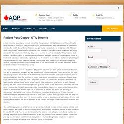 Rodent Pest Control GTA Toronto - Rodent Control Exterminators - APQ PEST CONTROL
