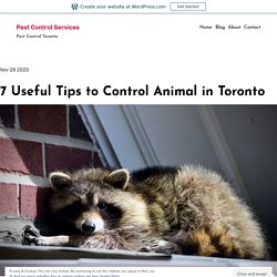 7 Useful Tips to Control Animal in Toronto