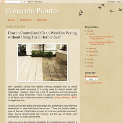How to Control and Clean Weed on Paving without Using Toxic Herbicides?