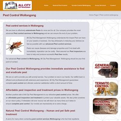 Pest Control Wollongong, NSW