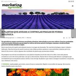 15 plantas que ajudam a controlar pragas de forma biológica - Marketing Agrícola