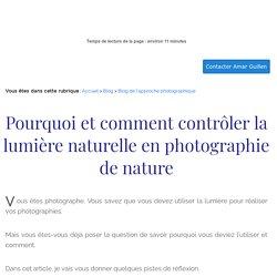 Pourquoi et comment contrôler la lumière en photographie de nature