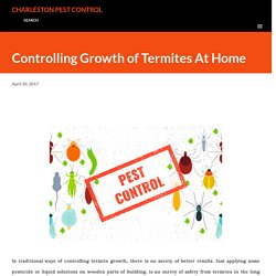 Controlling Growth of Termites At Home