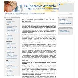 Affût, traques et controverses, la Soft Systems Methodology