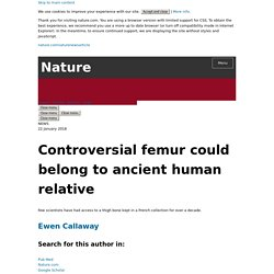 Controversial femur could belong to ancient human relative