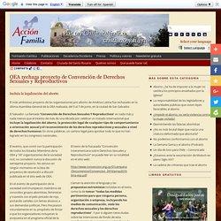 OEA rechaza proyecto de Convención de Derechos Sexuales y Reproductivos