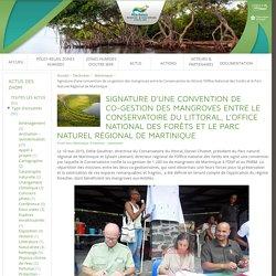 Pôle-relais Zones Humides d'Outre-mer » Signature d'une convention de co-gestion des mangroves entre le Conservatoire du littoral, l'Office National des Forêts et le Parc Naturel Régional de Martinique