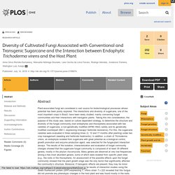 PLOS 14/07/16 Diversity of Cultivated Fungi Associated with Conventional and Transgenic Sugarcane and the Interaction between Endophytic Trichoderma virens and the Host Plant