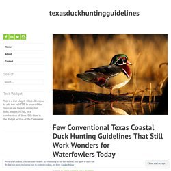 Few Conventional Texas Coastal Duck Hunting Guidelines That Still Work Wonders for Waterfowlers Today – texasduckhuntingguidelines