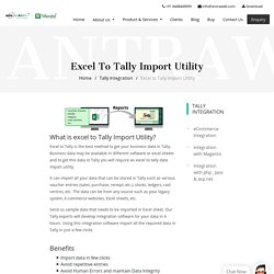 Import excel data in Tally automatically