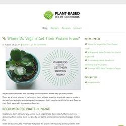 Plant based cookbook blog