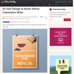 10 Cool Things to Know About Carménère Wine