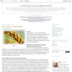 Celiac, Gluten and Trypsin Inhibitor