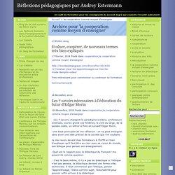 la cooperation comme moyen d'enseigner · Réflexions pédagogiques par Audrey Estermann