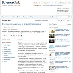 Chromosome cooperation is long-distance endeavor