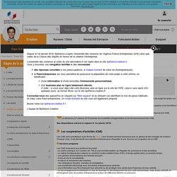 Coopérative d'activité et d'emploi (CAE)