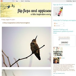 flipflops and applesauce: A Very Cooperative Little Hummingbird