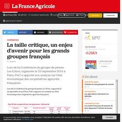 Coopératives : La taille critique, un enjeu d'avenir pour les grands groupes français